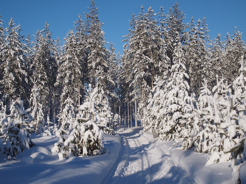 skiing_400